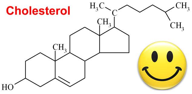 hcg diet cholesterol