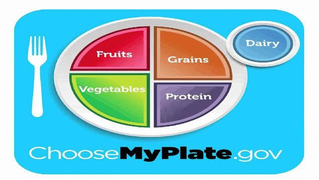choosemyplate federal diet guidelines